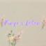 Zauberschulen