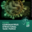 FG085 Coronavirus Structural Task Force