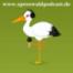 Konditorei Zuckerstübchen, Gesundheits-Webinare mit dem Sportpark Lübben, Digitales Museum Lübben