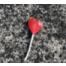 Each time you break my heart ...