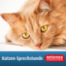 Gebissgesundheit bei Katzen unterstützen