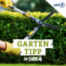 SWR4 Gartentipp - Pfaffenhütchen