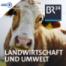 Ungewöhnliche Allianz: Landwirte und Umweltschützer fordern neue Agrarpolitik