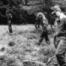 Die Geheimnisse des Totenwaldes (1-9) - Ein verhängnisvoller Ausflug
