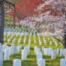 Kann sterben schön sein? Der US-Nationalfriedhof Arlington