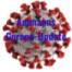Ammanns Corona-Update - Facharzt Dr. Marcus Franz kritisiert COVID-Maßnahmen der Regierung