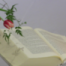 Gottes Geist baut Gemeinde (Apg 2 – Pfingsten)
