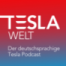 Tesla Welt - 183 - Model 3 an der Spitze in Europa, Plaid Model S verschiebt sich erneut, Großes Software Update mit Auto Waschmodus und mehr