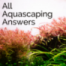 AAA #109 - Warum im Aquascaping keine Bodenfilter verwendet werden, richtige Kameras & sinnvolle Soilhöhen