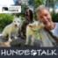 Heiko Wasser - eine starke Stimme und ein großes Herz für Hunde