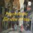 Psychologie für den Alltag - Wie tief kann ein 'Wille' vorhanden sein?